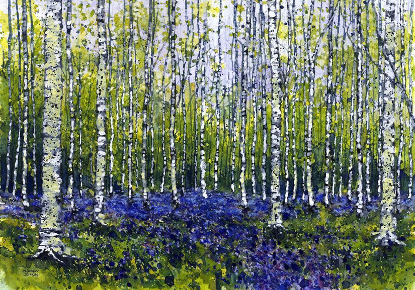 Bluebells And Silver Birch Trees Watercolor Landscape Paintings