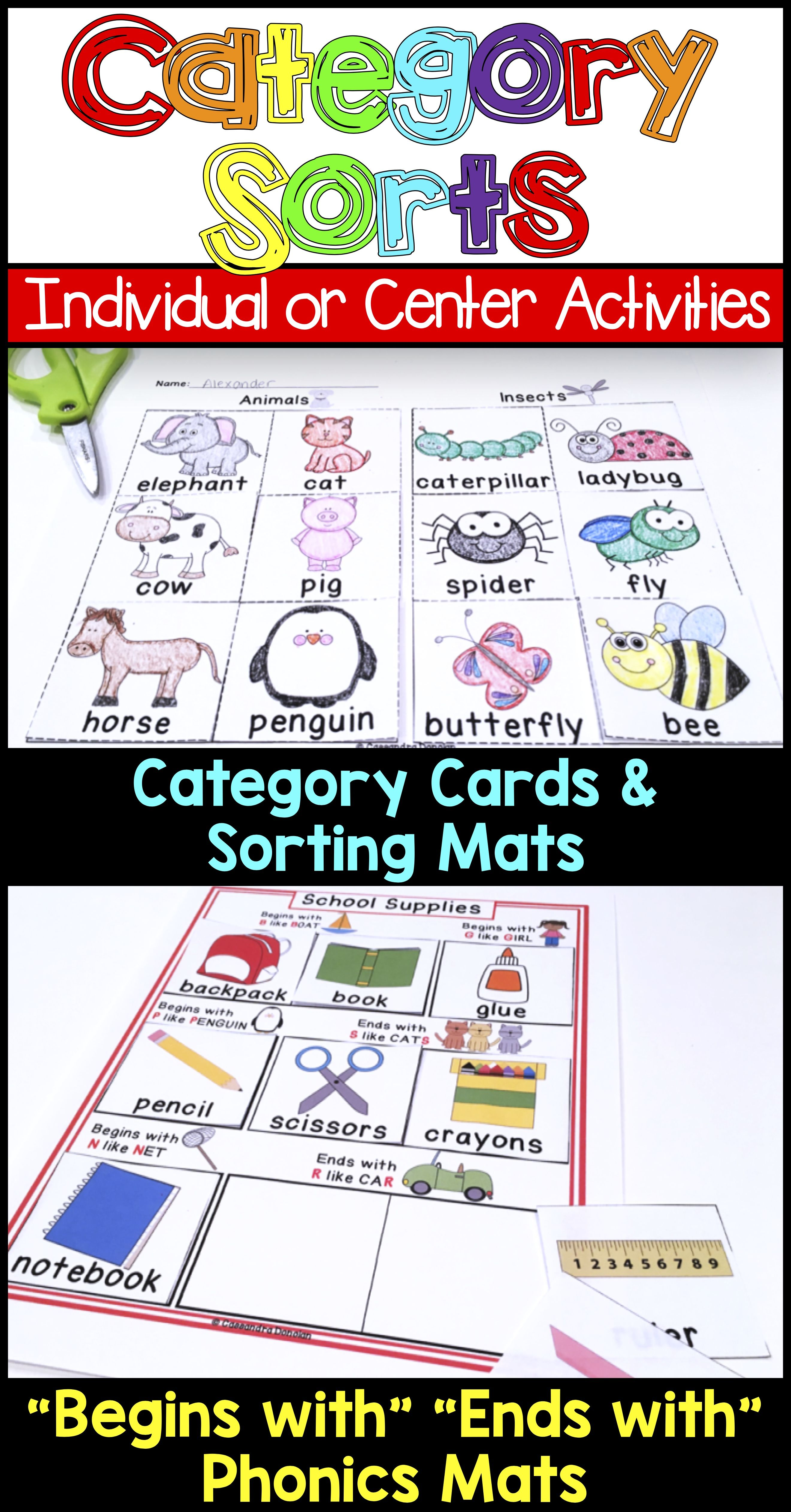 Category Sorts Concept Sorts And Phonics Printables