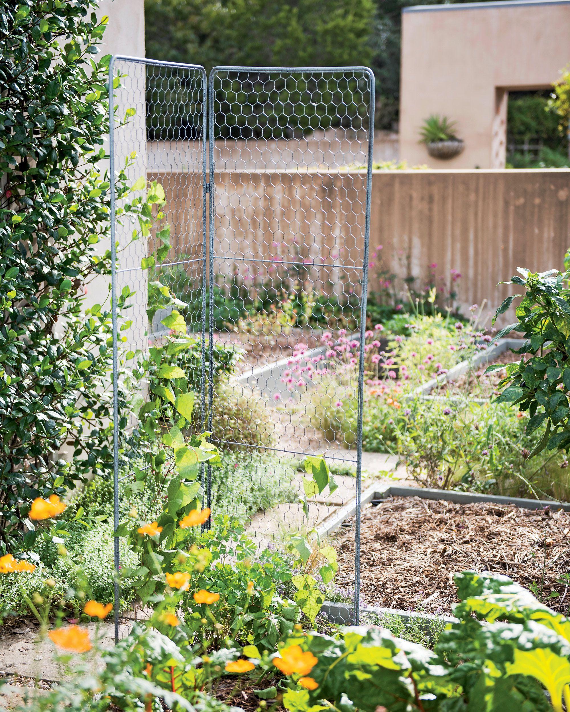 Rose Trellis Jardin Rose Arch Gardener S Supply Wire Trellis