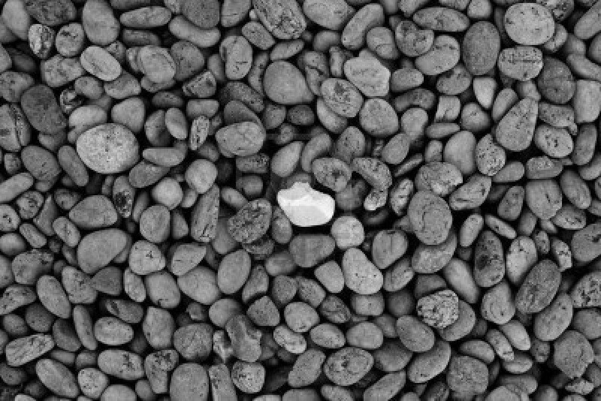92 mejores imágenes de texturas piedras | Rocks, Texture y ...