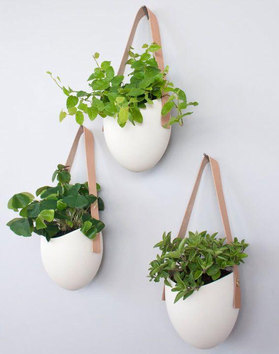 Perfect Wall Planter Http Blog Hgtv Design Hanging Plantsindoor