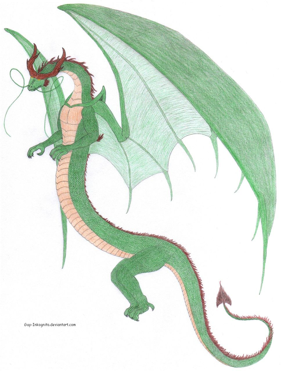 chinese-european dragon mix | colored pencil drawing | own Dragons ...