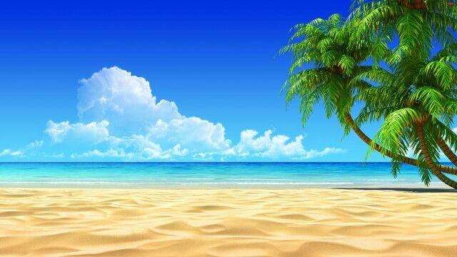 Pantai Pemandangan Pantai Latar Belakang