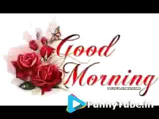 Good Morning Everyone Good Morning Video Good Morning Cards Good Morning Wallpaper Good Morning Gif