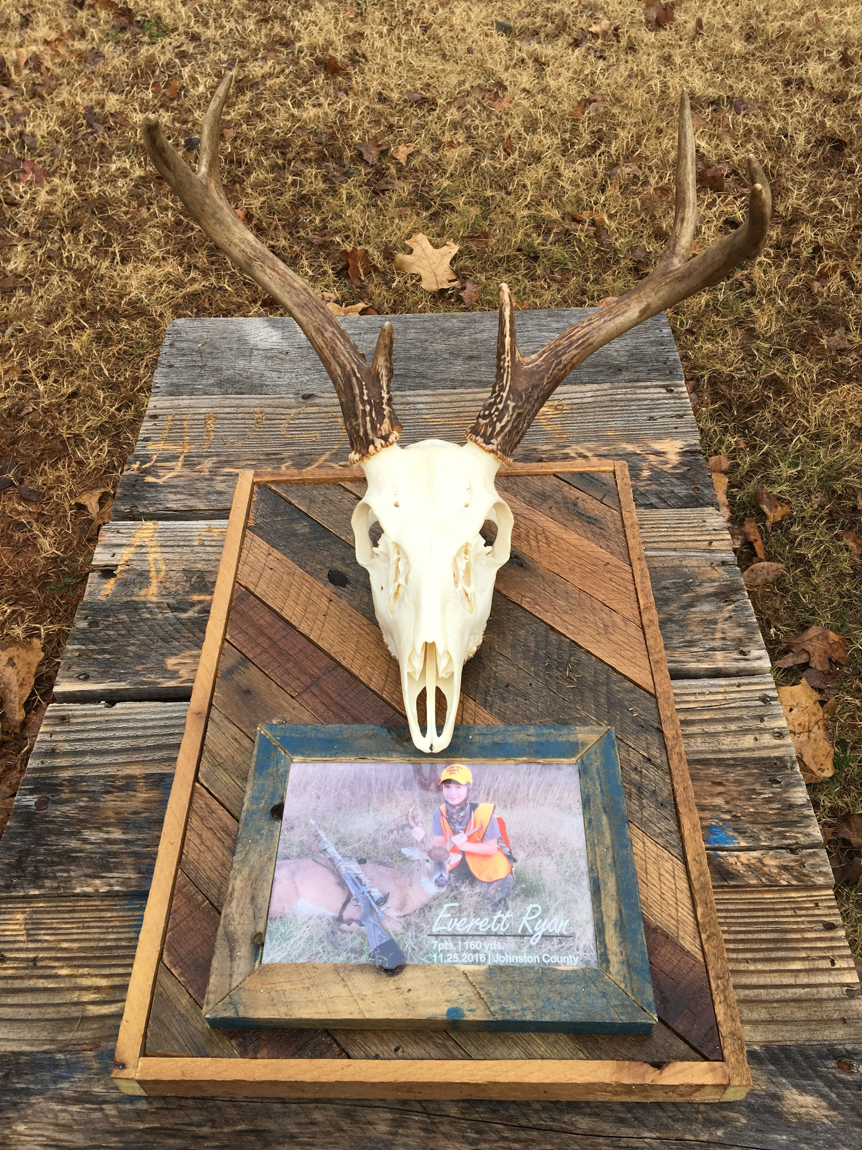 My Sons First Buck Did A European Mount On Reclaimed Pallet Wood