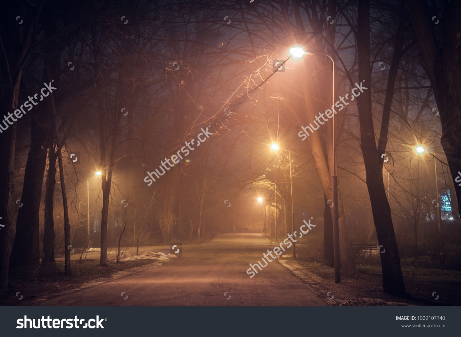Footpath In A Fabulous Winter City Park At Night In Fog Beautiful Foggy Evening In The Park Kiev Ukraine Sponsored Ad City Park Night Footpath