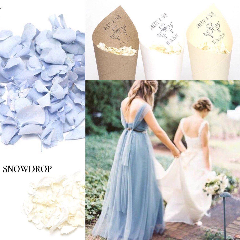 Hydrangea Macrophylla Wedding Gown: Freeze Dried White/ivory Wedding Confetti Hydrangea Petals