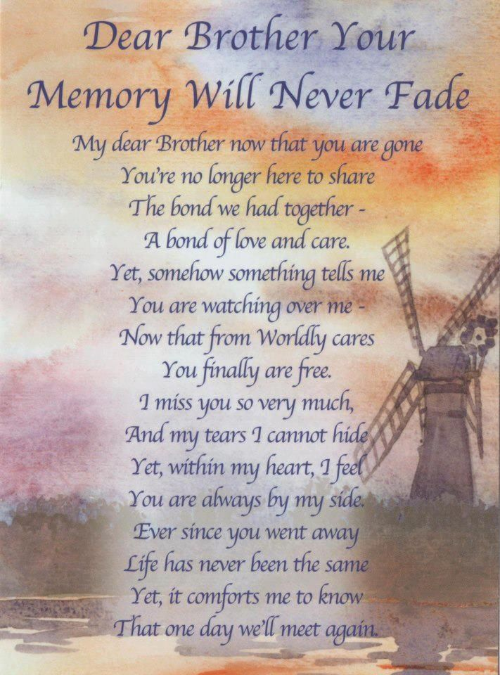 Memories My brother quotes, Brother quotes, Brother