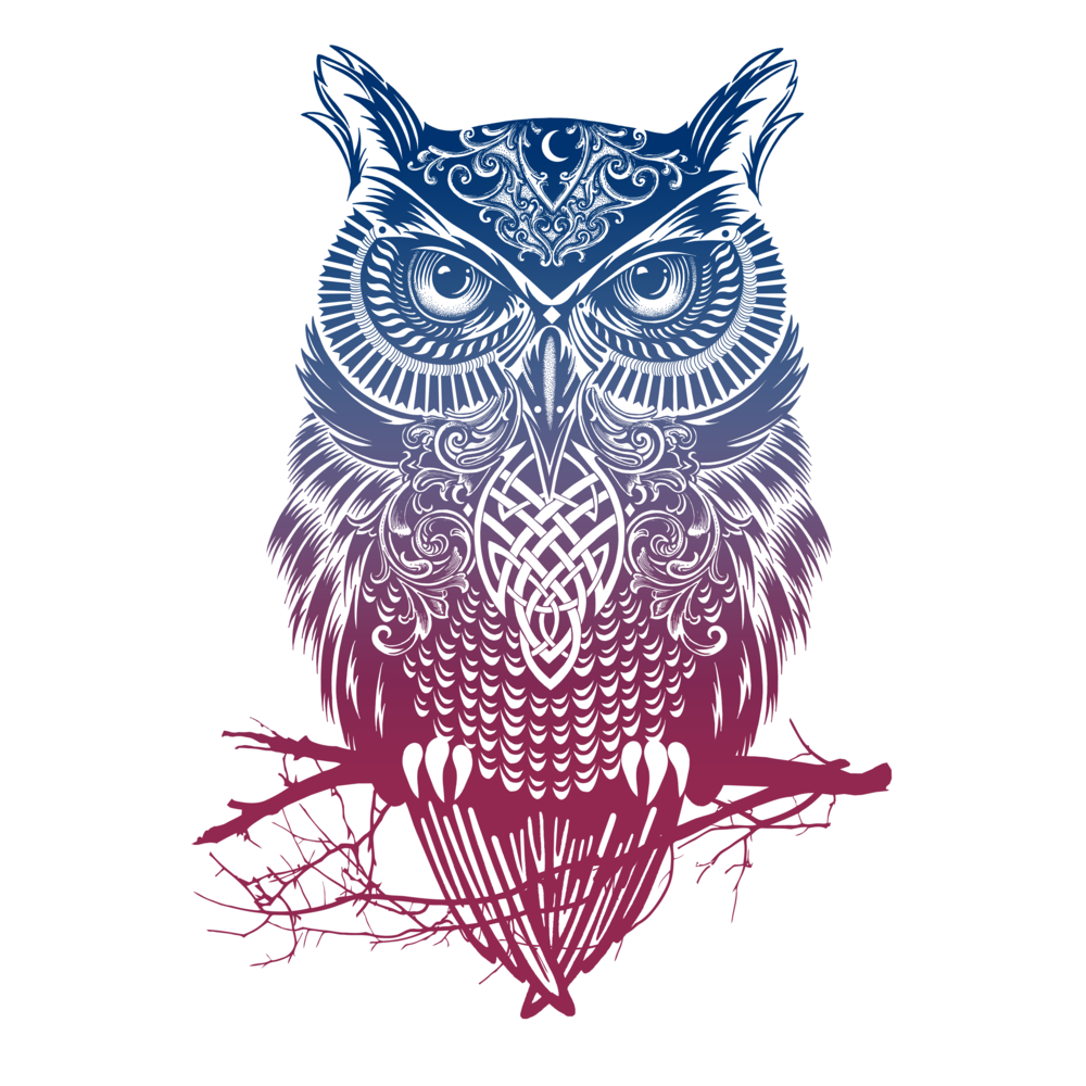 warrior owl by rachelcaldwell t shirt design owl. Black Bedroom Furniture Sets. Home Design Ideas