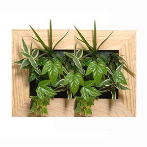 cadre vegetal modern chambre h l ne et anne pinterest cadre v g tal vegetal et cadres. Black Bedroom Furniture Sets. Home Design Ideas