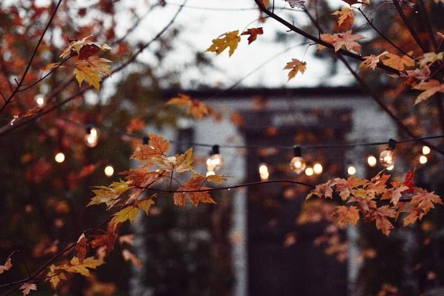 Autumn Lights Melanie DeFazio Photography. Tumblr