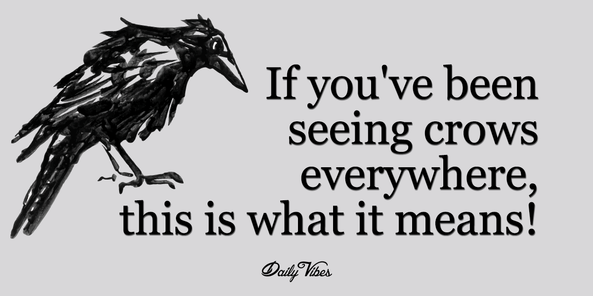 The Crow Also Carries The Power Of Prophetic Insight And Is