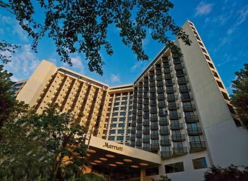 dog friendly hotel in portland or portland marriott downtown rh pinterest es