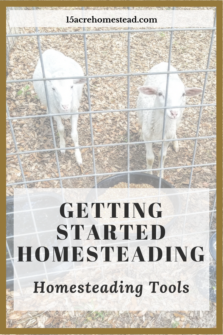 Part 2 of the Getting Started Homesteading Series. Learn