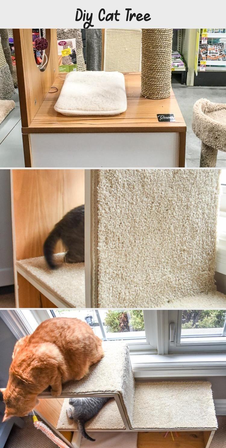 Diy Cat Tree Cats Diy Cat Tree Diy Cat Playground Diy Cat Scratching Post Kitten Playgro 2020