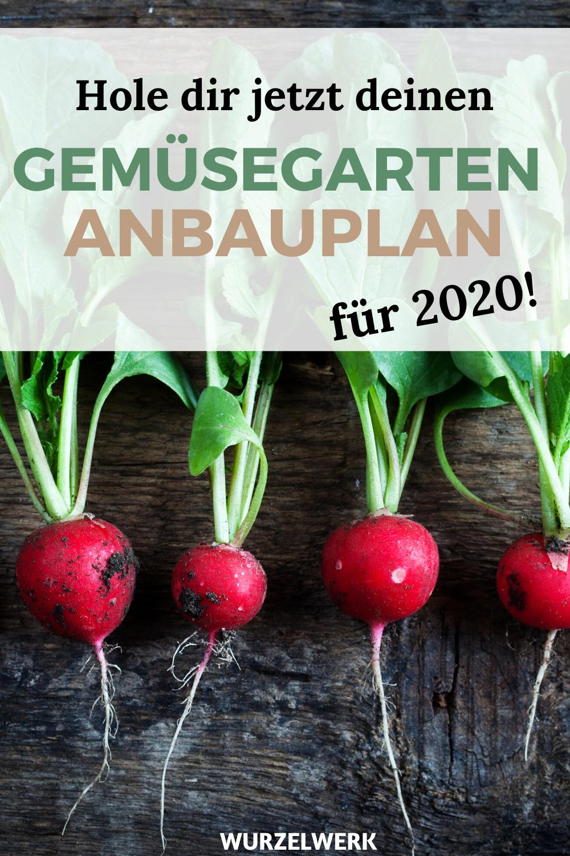 Wie Du Einen Anbauplan Fur Deinen Gemusegarten Erstellst Beispielplan Wurzelwerk In 2020 Pflanzplan Anbau Gemusegarten Planer