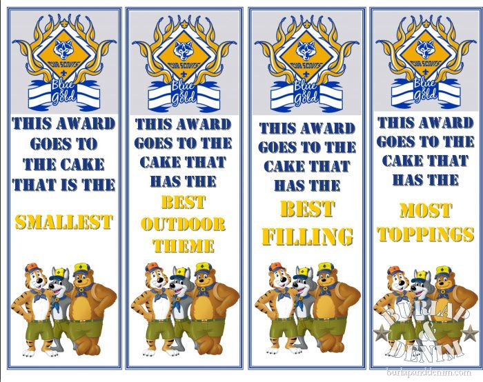 Cub Scout Cake Decorating Contest Awards