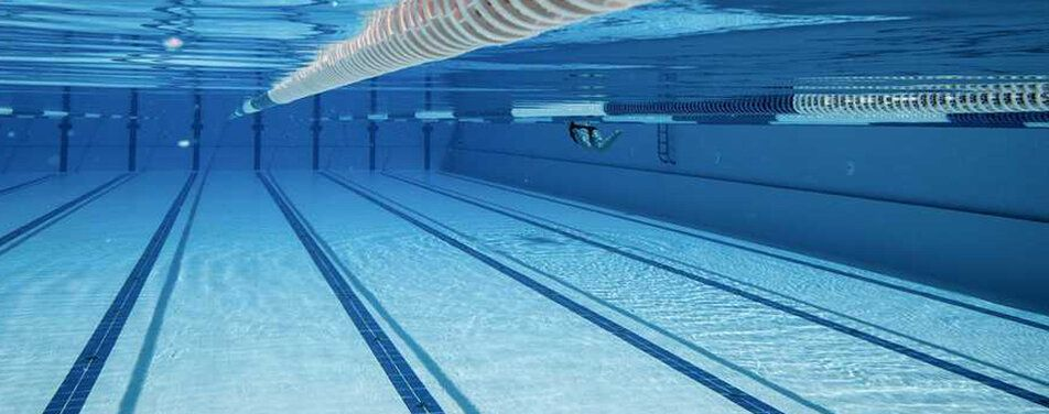 Everyone swims with images learn to swim safe