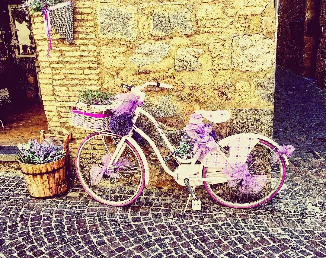 Bicicletta !!!! Oooooh mancava proprio una bicicletta nel mio feed e poi questa era troppo cariiiiiiiiiina tutta corredata di lavanda !!!    #bicicletta #bicycle #bicycleporn #bicyclette #bicyclelove #instabicycle #orvieto #igersumbria #ig_umbria #webstagram #instagramhub #instagrammers #italia365 #scatti_italiani  #thegoodlife  #iphoneography #ignation #italy_photolovers #viaggioinitalia  #instagramitalia #huntgramitaly #livethelittlethings #postitfortheaesthetic #nothingisordinary…