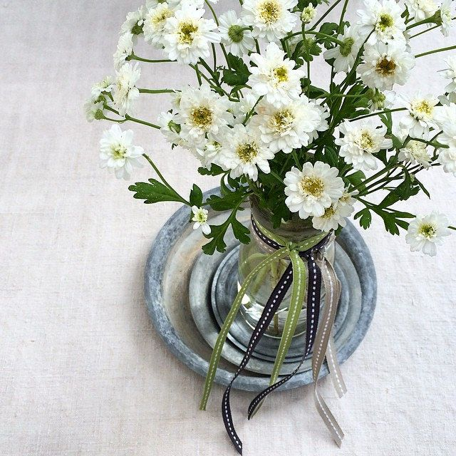 Florets Floral Quote On The Blog Flowers Double Feverfew Floral Quotes Flowers Seasonal Flowers
