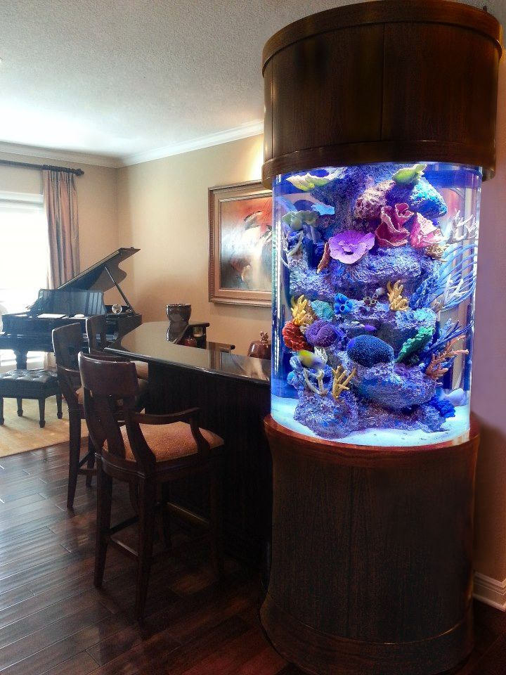 This custom cylinder aquarium is built into a bar surround for Built in fish tank