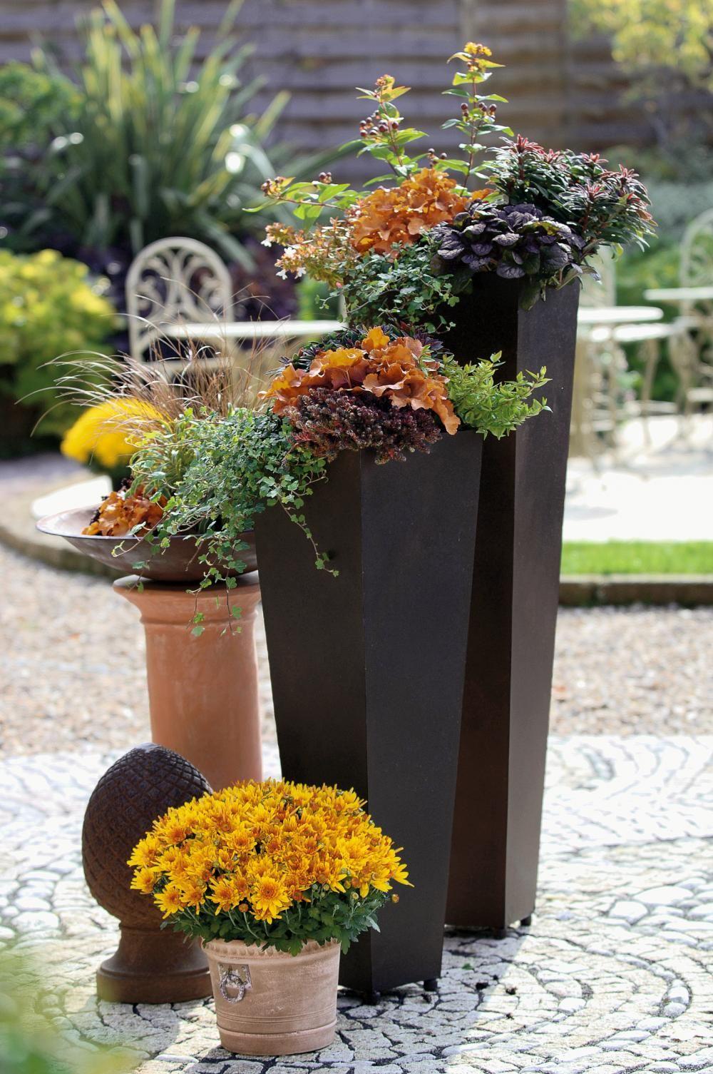herbstbepflanzung f r t pfe und k bel garden. Black Bedroom Furniture Sets. Home Design Ideas
