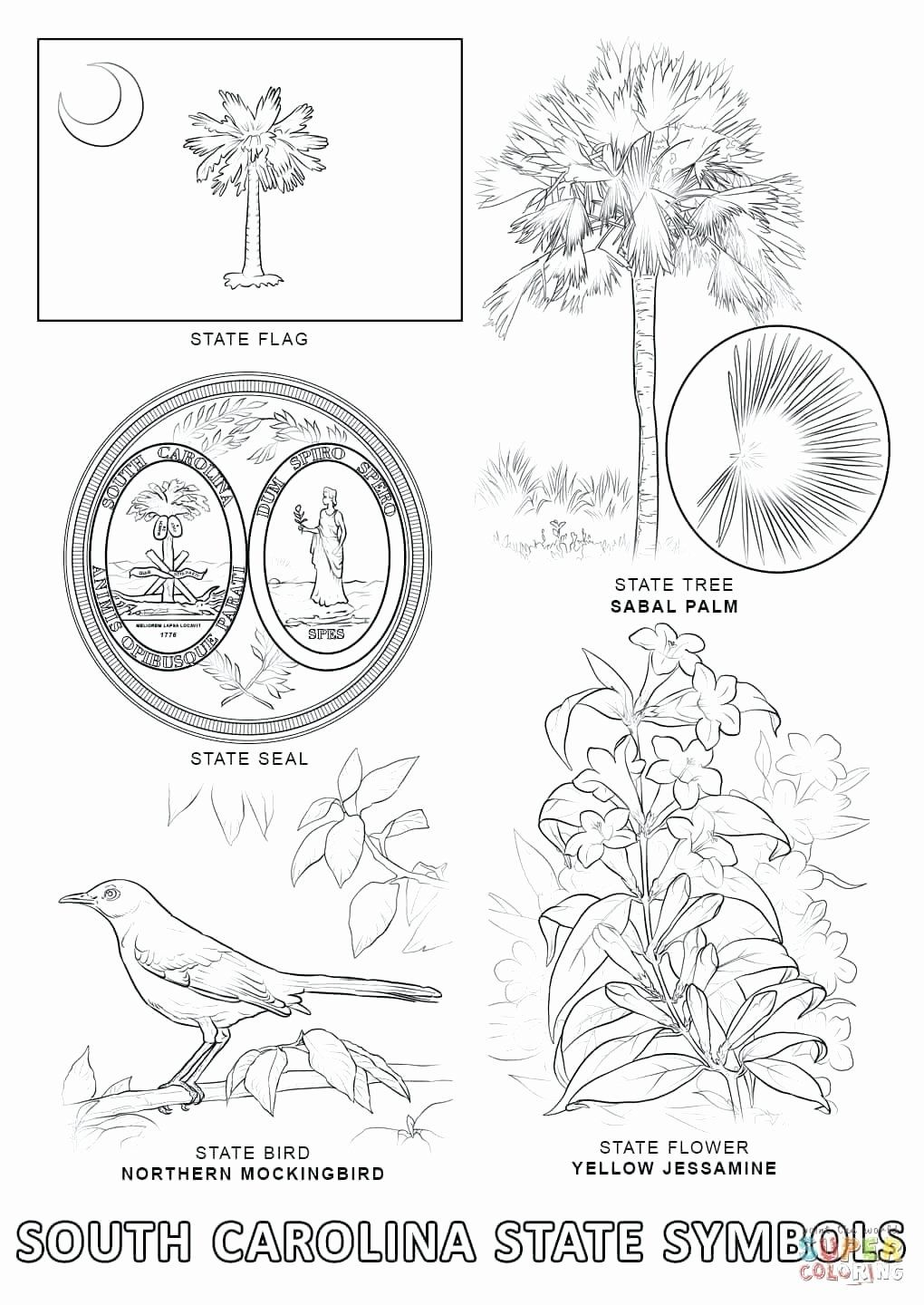 Georgia State Bird Coloring Page Beautiful North Carolina Coloring