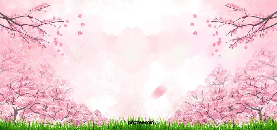 Cherry Blossom Pink Background Pink Background Images Watercolor Flower Background Cherry Blossom Background