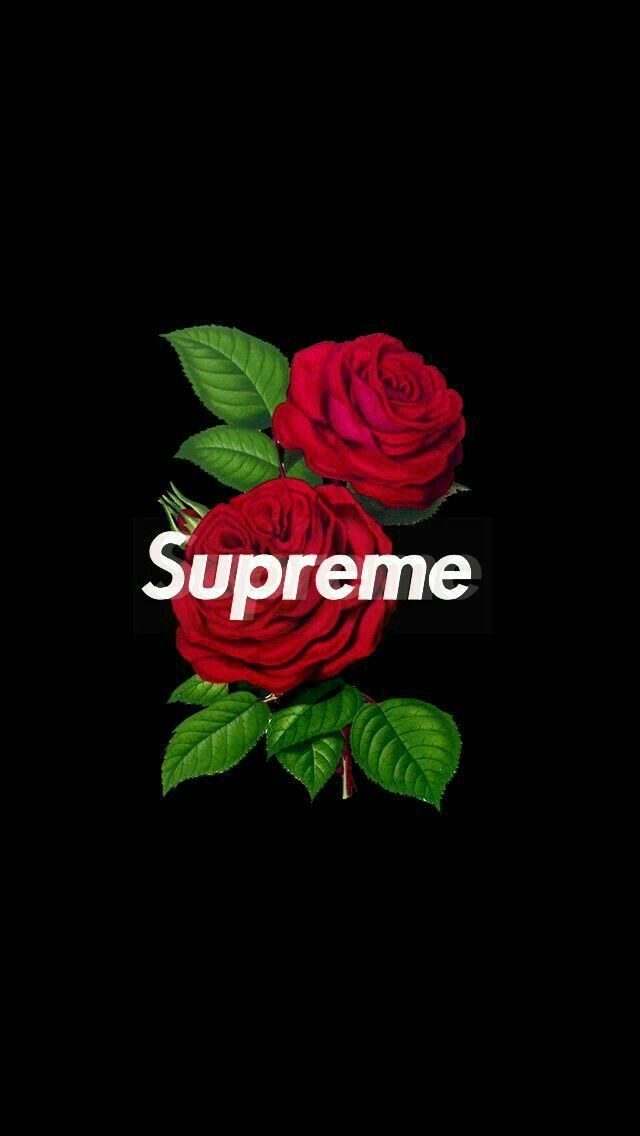 Saucedollgang Wallpaper Hypebeast Wallpaper Supreme Wallpaper