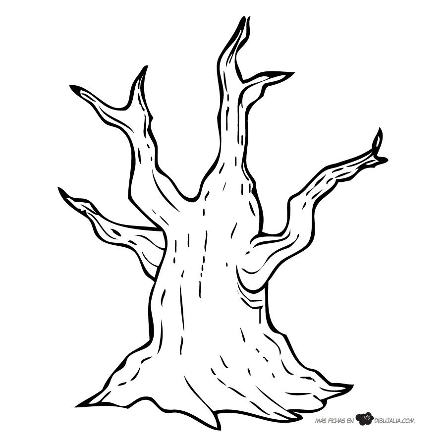 Troncos Arbol De La Vida Dibujos Arboles De Invierno
