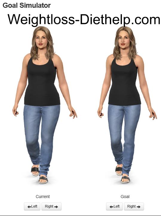 Virtual Weight Loss Models : virtual, weight, models, Tips,, Tools, Hints