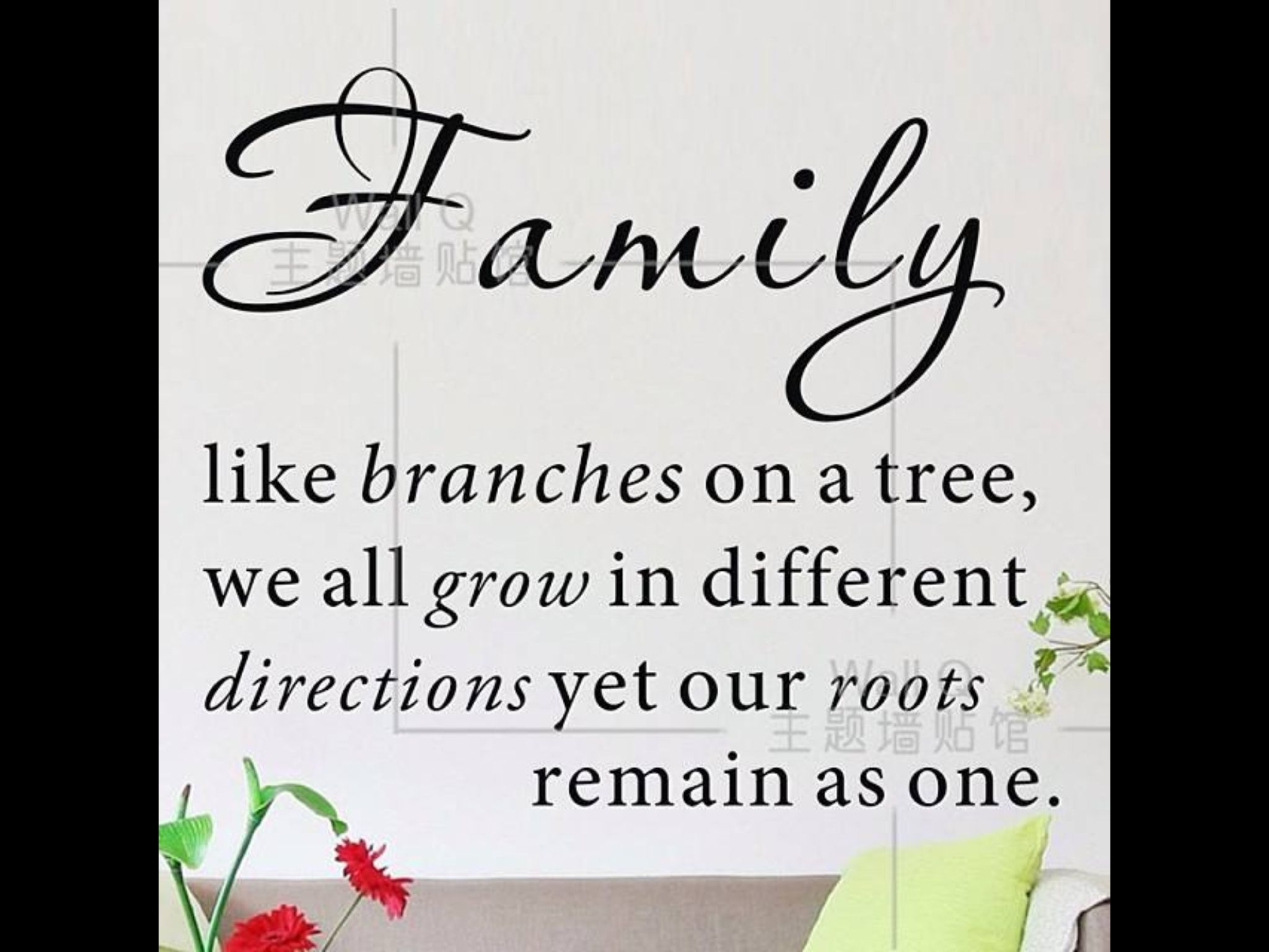 Nice Thought Family Tree Quotes Family Quotes Tree Quotes