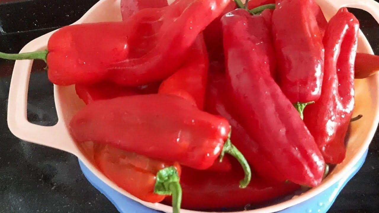 تدبيرة تخزين الفلفل الاحمر الحلو البسيطة Comment Conserver Les Poivrons Rouges Methode Simple Youtube Stuffed Peppers Food Vegetables