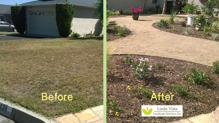 Drought Tolerant Landscaping before and after drought tolerant landscapelinda vista