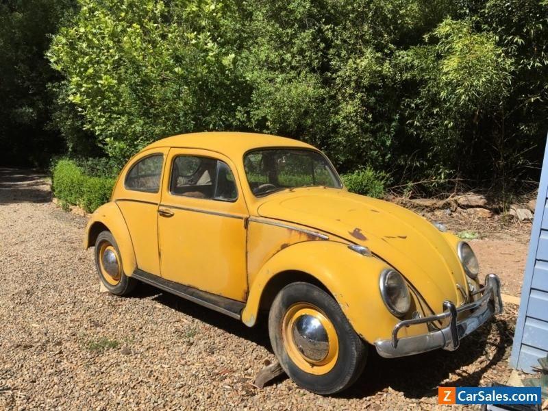 1962 VW Beetle type 1 car #vwvolkswagen #beetle #forsale #australia ...