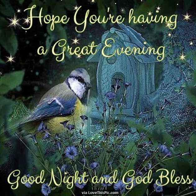 Hope You Are Having A Great Evening Good Night And God Bless | Good night blessings, Good night everyone, Sweet dreams sleep tight