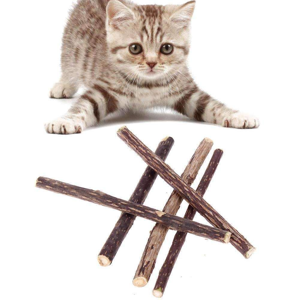 Jouet En Baton De Cataire Naturel Pour Chats 5 Batons Inclus In 2020 Cat Cleaning Kitten Cleaning Cat Toys