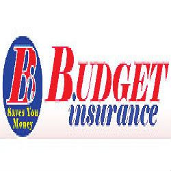 Budget Insurance Is One Of The Fastest Growing Multi Line