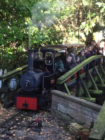 Photo Of Brookside Garden Centre Miniature Railway Garden Center Trip Advisor Stockport