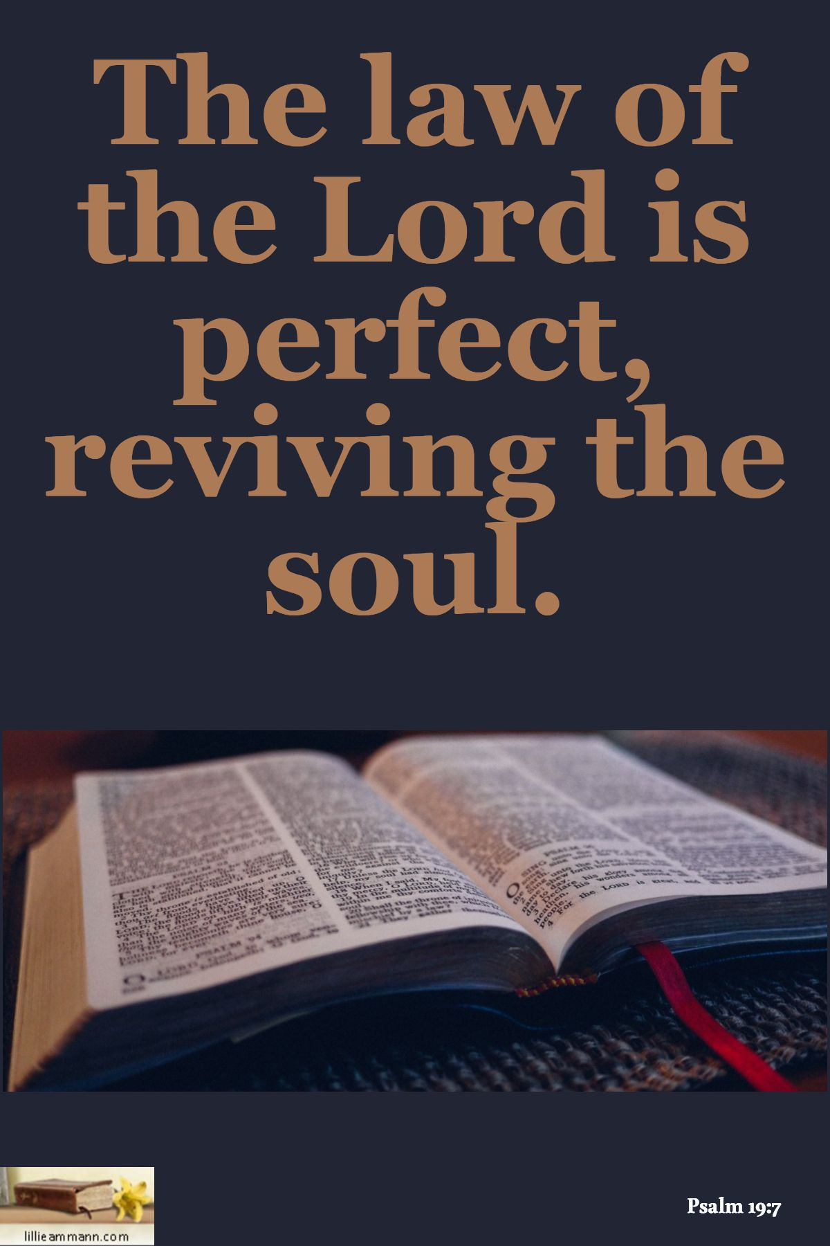 Psalm 19:7 / The law of the Lord is perfect, reviving the soul. | Psalms,  Quotations, Scripture