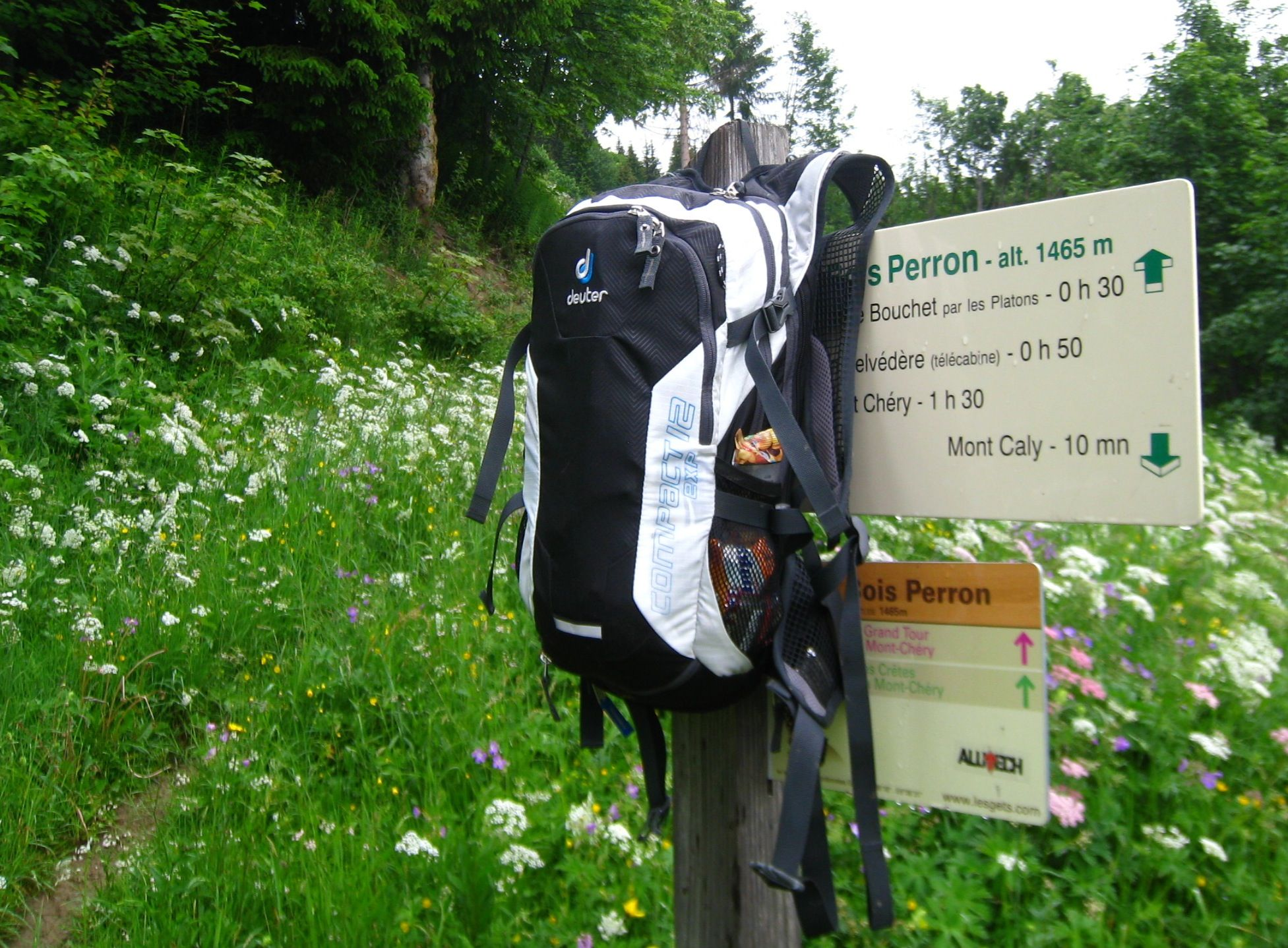 Review Deuter Compact Exp 12 Hydration Pack Hydration Pack Packing Hydration