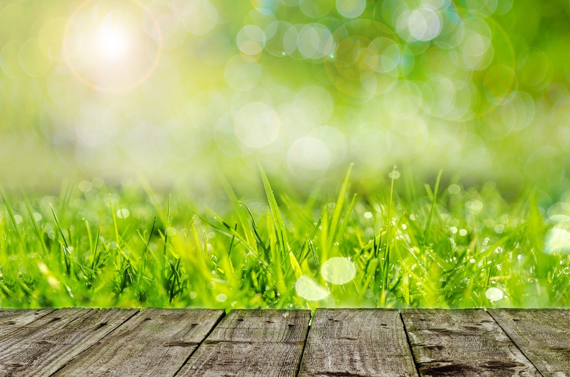 Wooden Table In The Garden Wonderful Green Grass Spring Wallpapers Seasons Wallpapers Download Beautiful Hd Wallpaper 1080p Lawn And Garden Lawn Care Lawn