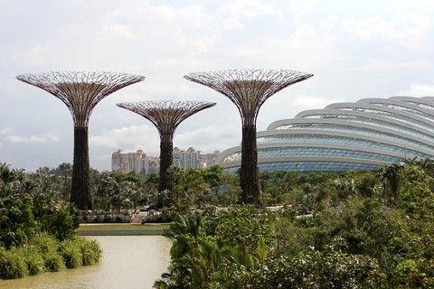Singaporeu0027s New High Tech Garden (solor Panel Trees)