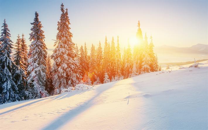 Fondo De Pantalla Paisaje Montañas Nevada: Descargar Fondos De Pantalla Paisaje De Invierno