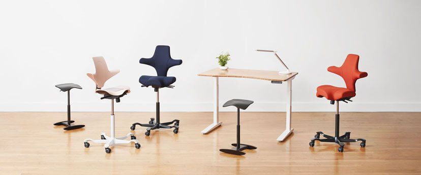 Fully Standing Desks Adjustable Height Ergonomic Chairs