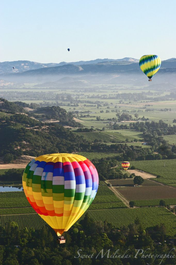 Napa Valley CA; Hot Air Balloon Ride ) Napa vacation