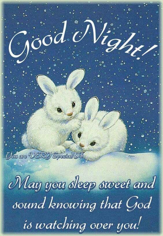 Good night sweet dreams my friend stay warm