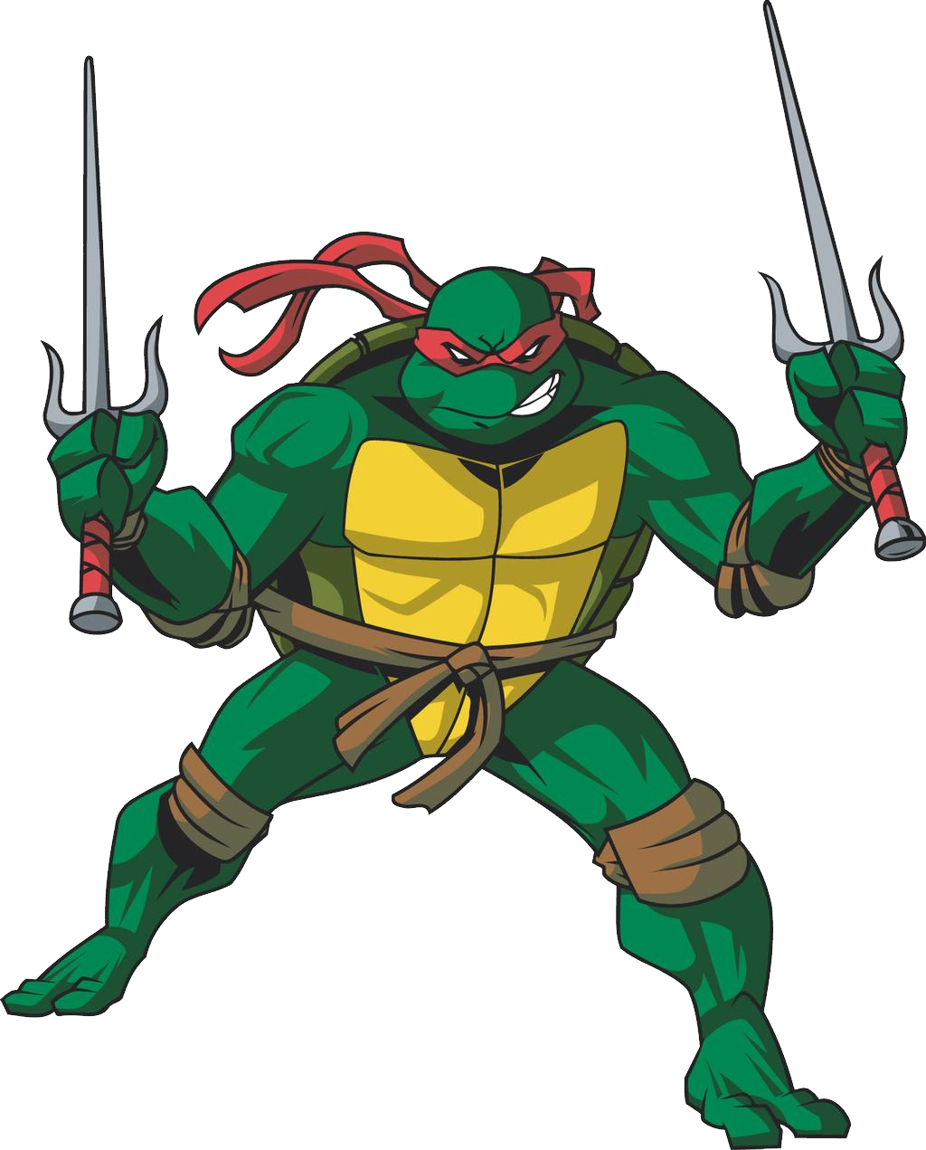 Raphael Ninja Turtle Picture