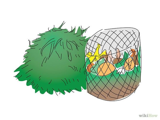 24 consejos para ayudar al medio ambiente - Cultura Colectiva