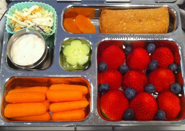 The 25 Best Planet Box Ideas On Pinterest Planet Lunch